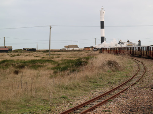 Discover Dungeness Days